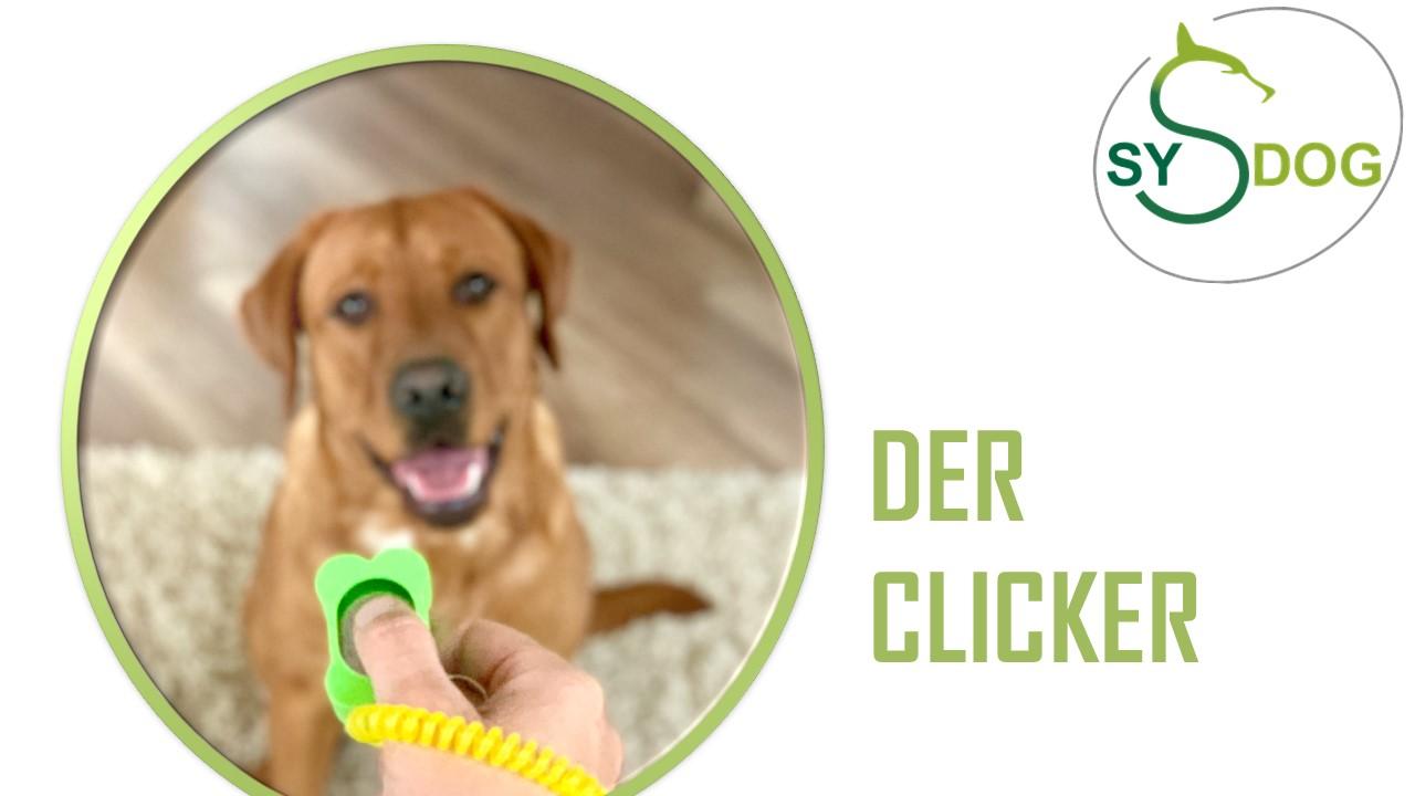 Hilfsmittel im Hundetraining: Teil 3: DER CLICKER
